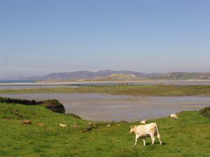 Pédaler le long de la belle côte proche de Glenties, Donegal