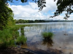 Self guided bike tour YCL Lough Gill