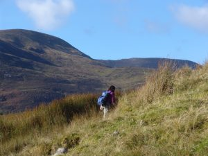 Challenging Hiking tour Ireland