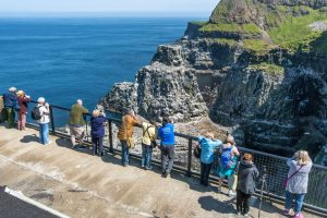 Seabird watching on Causeway Coast cycling holiday.